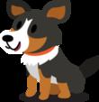 Banner Dog